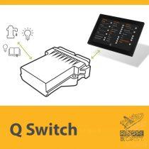 Q1 Digital Switch - DSW1